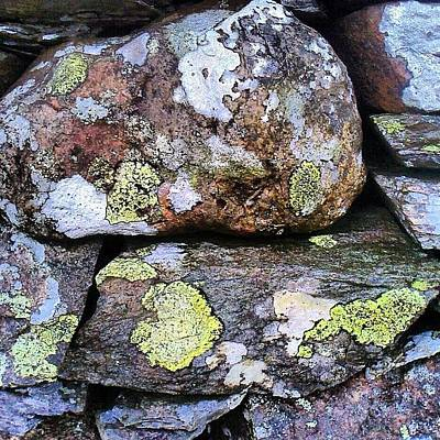 Surface Photograph - Wet Dry Stone Wall by Nic Squirrell