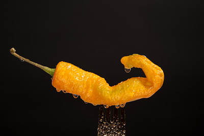 Photograph - Wet Jalapeno by Johnny Sandaire
