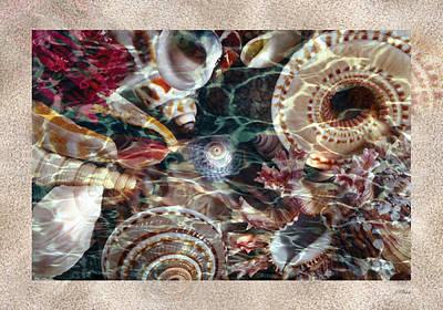 Photograph - Wet Shells Sand Card by John Neville Cohen