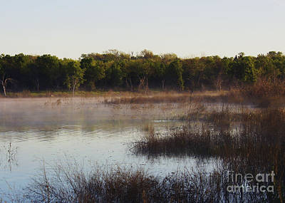 Photograph - Wetland Morning by Diana Cox