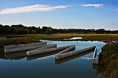 Photograph - Wetland Protection by Edward Peterson