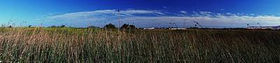 Photograph - Wetlands Panorama by Michael Courtney