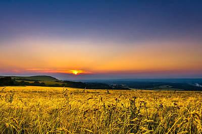 Y120831 Photograph - Wheat Field by Rob Webb
