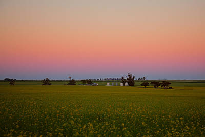 Wheatbelt Country Art Print