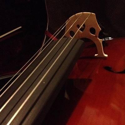 String Instruments Photograph - where Words Fail, Music Speaks. by Amanda Jordan