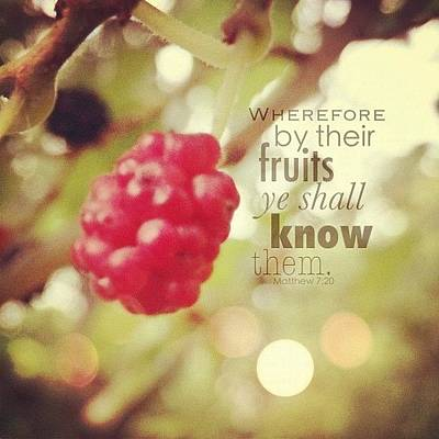 Inspirational Photograph - wherefore By Their Fruits Ye Shall by Traci Beeson