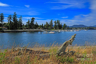 Whiffin Spit And The Harbor At Sooke Art Print by Louise Heusinkveld