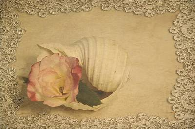 Photograph - Whisper Of A Rose by Jan Amiss Photography