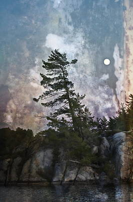 Photograph - Whispering Moon by Alan Norsworthy