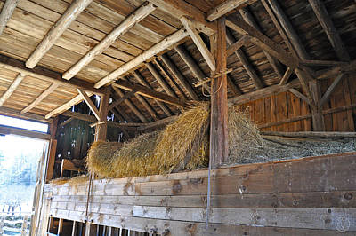 Photograph - Whispers In A Barn by Healing Woman