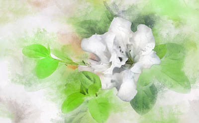 Digital Art - White Azalea 2 by Francesa Miller