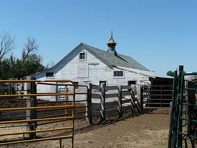 White Barn  And Corrals Art Print by Bobbylee Farrier
