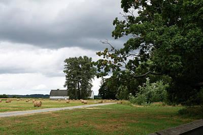 Photograph - White Barn Gray Skies by Lorraine Devon Wilke