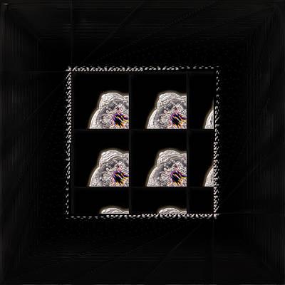 White Cherry Blossom Squared Original by Li   van Saathoff