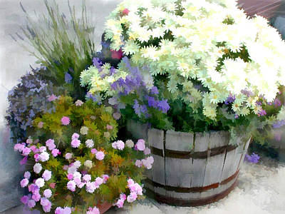 White Chrysanthemums In A Barrel Art Print by Elaine Plesser