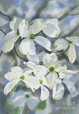 Dogwood Blossom Painting - White Dogwood by Sharon Freeman