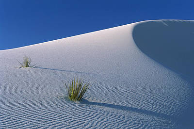 Photograph - White Dunes In Gypsum Dune Field, White by Konrad Wothe