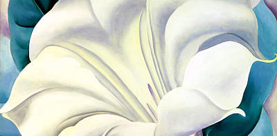 White Flower 10 Art Print by Sumit Mehndiratta