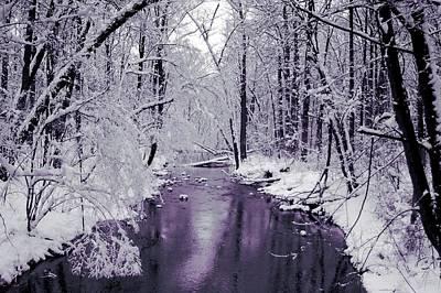White Forest Art Print by Jan Lakey