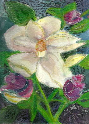 White Happy Flower Art Print by Anne-Elizabeth Whiteway