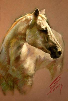 White Horse Wall Art - Pastel - White Horse by Ylli Haruni