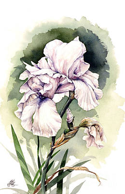 Art Print featuring the painting White Iris by Bob  George