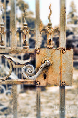Painted Garden Gate Photograph - White Iron Gate Details by Jill Battaglia