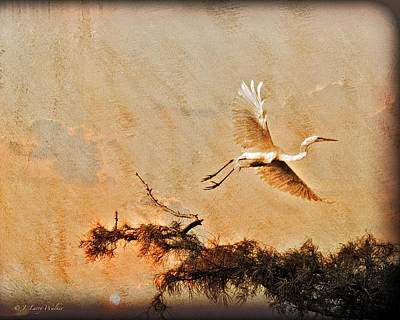 Digital Art - White Lake Swamp Sunrise - Egret by J Larry Walker