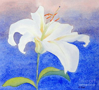 Painting - White Lily by Laurel Best