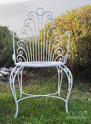 White Metal Garden Chair Art Print by Noam Armonn
