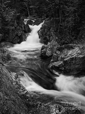 Photograph - White Mountains Stream by David Waldrop