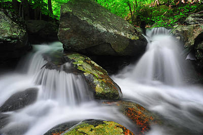 Photograph - White Oak Canyon Cascades by Bernard Chen