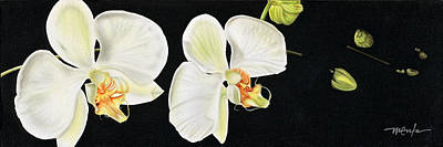 Painting - White Orchids by Dan Menta