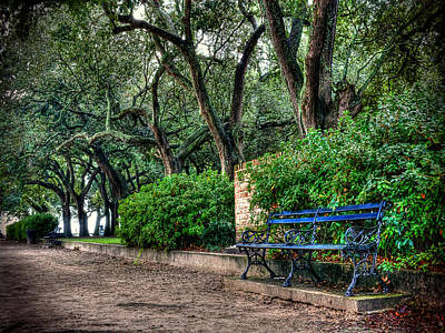 Photograph - White Point Gardens Bench by Jenny Ellen Photography