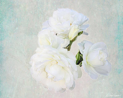 Photograph - White Roses by Diana Haronis