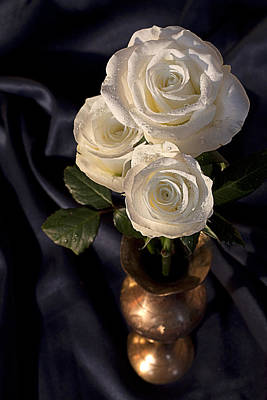 White Roses Art Print by Shirley Mitchell