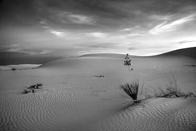 White Sands Dusk Art Print