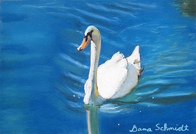 White Swan At Lake Eola Of Orlando Art Print