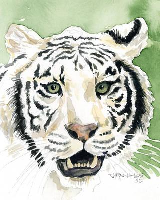 White Tiger Art Print by Mark Jennings