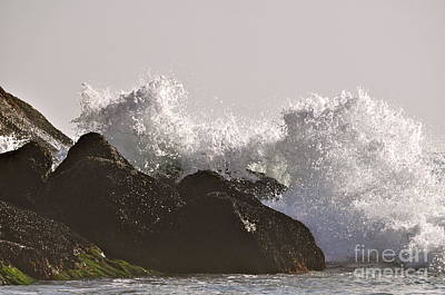 Photograph - White Water by Johanne Peale