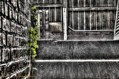 Who'll Stop The Rain Art Print by Dan Crosby