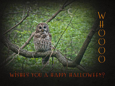 Whoooo Wishes  You A Happy Halloween - Greeting Card - Owl Art Print by Mother Nature
