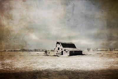 Wide Open Spaces Art Print by Julie Hamilton