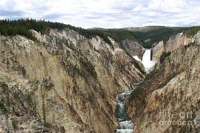 Art Print featuring the photograph Wide View Of The Lower Falls In Yellowstone by Living Color Photography Lorraine Lynch