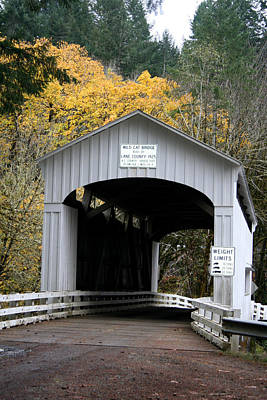 Photograph - Wild Cat Bridge  by Mary Gaines