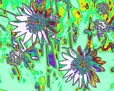 Wild Daisies Art Print by Denise Oldridge