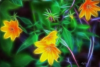 Photograph - Wild Flowers II by Barry Jones