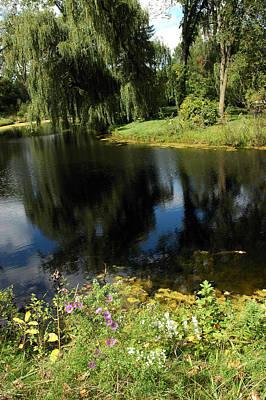 Photograph - Wild Flowers Reflect by LeeAnn McLaneGoetz McLaneGoetzStudioLLCcom