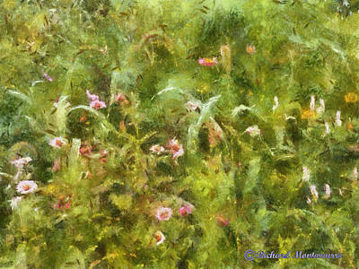 Wild Flowers Original by Richard  Montemurro