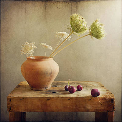 Food And Drink Photograph - Wild Flowers With Cherries by Copyright Anna Nemoy(Xaomena)
